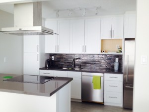 Cabinets R Us Modern White Shaker Wood Eve 2
